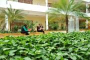 patio_wspia_001