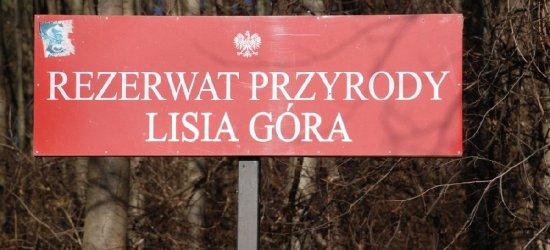 """Rezerwat przyrody """"Lisia Góra"""" pod opieką Uniwersytetu Rzeszowskiego"""