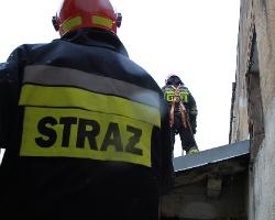 PODKARPACIE: 41 interwencji strażaków. Silny wiatr dał się we znaki