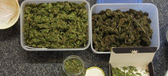 Poł kilograma marihuany. Surowa kara dla 20-latka