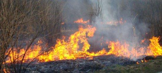 Masowe podpalanie traw w Rzeszowie. Strażacy interweniują