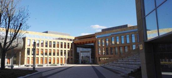 Nowy kierunek na Uniwersytecie Rzeszowskim – Lingwistyka Stosowana