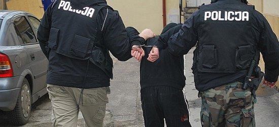 Rzeszowski złodziej-rekordzista. 21-latek oskarżony o 40 przestępstw